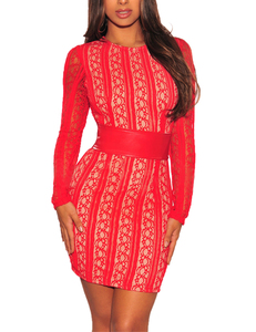 Lace belted bodycon dress rood